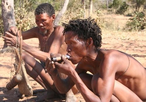 Bushmen Cover