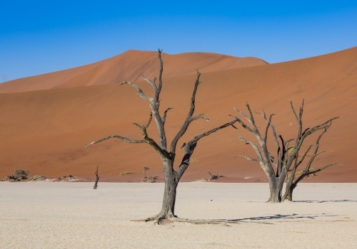 Southern Namibia Cover